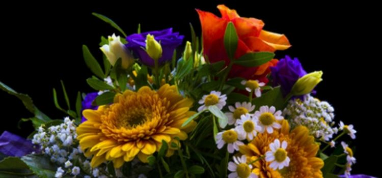 Cheap flowers online the perfect gift