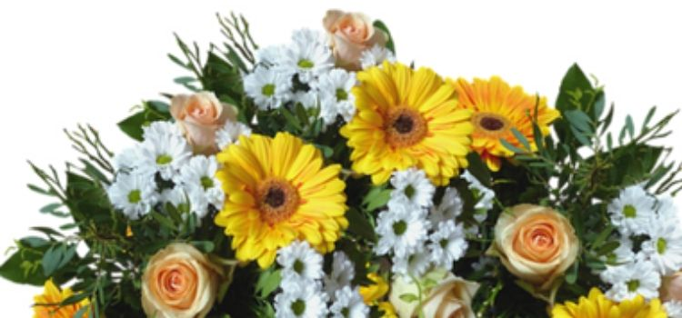 Places to buy flowers near me, the options